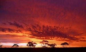 outback su
